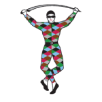 Harlequin Bowls Club Logo