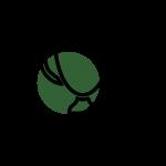 Harlequin Bowls Club